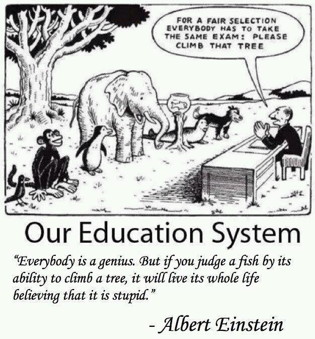 Sistemul nostru educațional