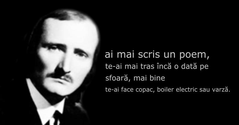 Citat, Mihai Ursachi